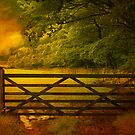 The Gate . by Irene  Burdell