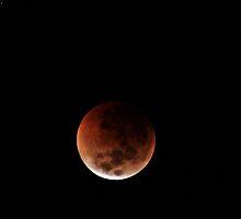 Lunar Eclipse 2 by chloemay