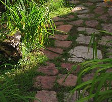 """Rock Pathway"" by dfrahm"