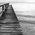 Beach Pier  by Damon Colbeck