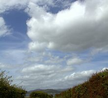 track to the beach - Inishowen by picketty