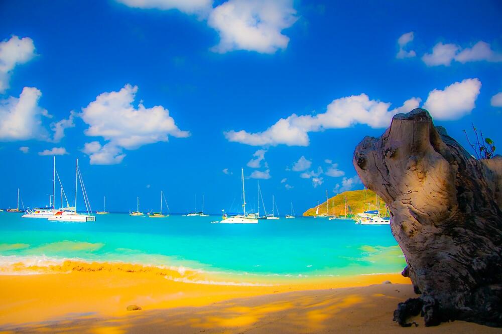 St Vincent Beach by Alanqpr