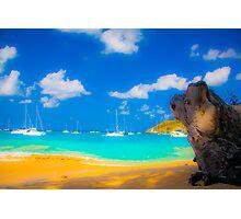 St Vincent Beach Photographic Print
