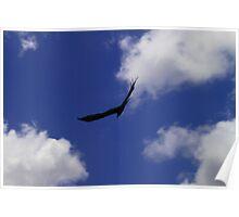 Majestic Skies Poster
