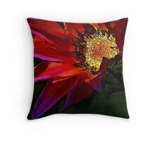 Gaddazzlin' Gazania Throw Pillow