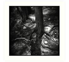 Trees #04 Art Print