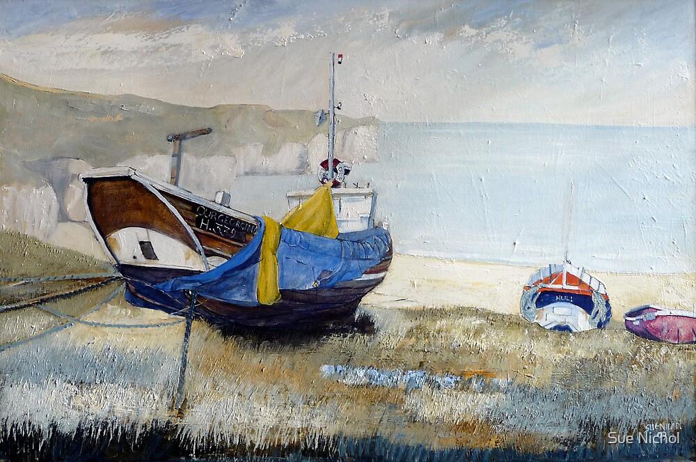 Our Georgina, North Landing, Flamborough 2 by Sue Nichol