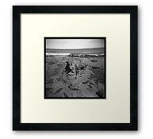 Coast #11 Framed Print