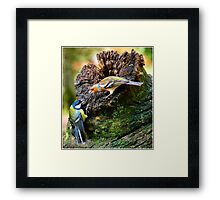 fight on Framed Print