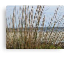 Ocean Grass Canvas Print