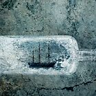 Ship in a Bottle by Barbara Ingersoll