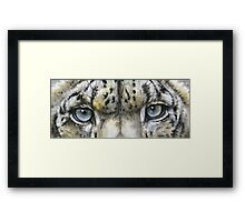 Eye-Catching Snow Leopard Framed Print