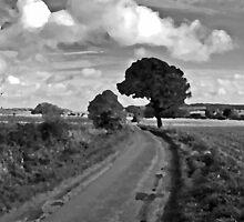 Leckhampton Hill by Nick  Gill