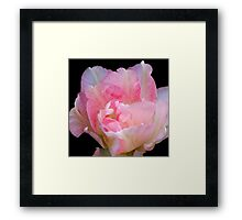 The Art Of A Simple Flower Framed Print