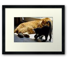 Frank and Farley...Friends, Almost... Framed Print