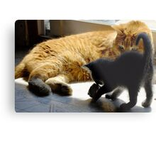 Frank and Farley...Friends, Almost... Metal Print