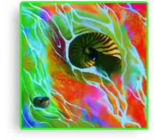 Bright Sands and Shells Canvas Print