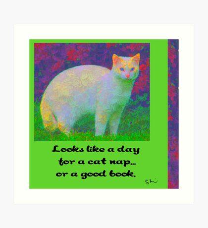 A Cat Nap or A Book? Art Print