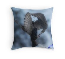 Starling fighting Throw Pillow