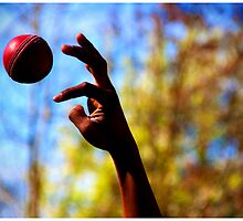The Release - Journey of a ball by gnanes