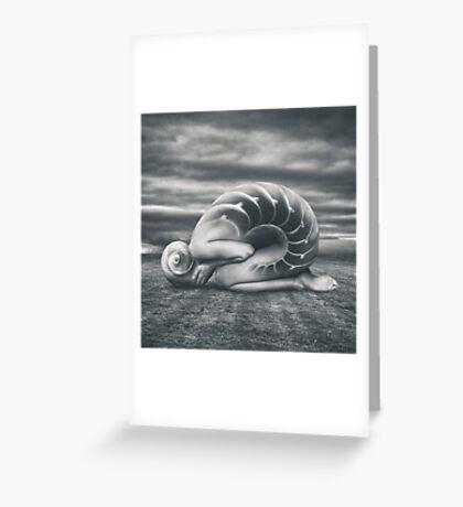 She shell Greeting Card