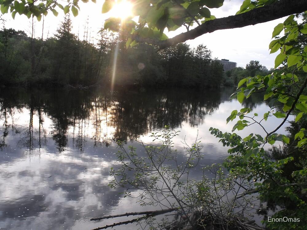 Serenity on the Huron River by EnonOmas