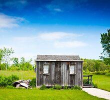 Abandoned Hut  by maxym