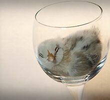 Sweet Dreams Chicky... by KansasA