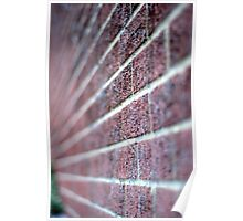 The wall. Perspective and DOF. Poster
