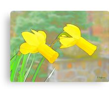 Windy Daffs Canvas Print