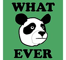 Whatever Funny Panda Photographic Print