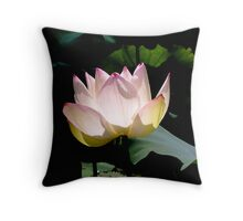 Lotus in the sun Throw Pillow