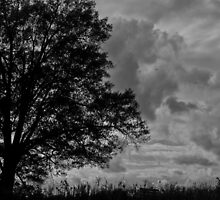 Ominous Stormfront by Andy Whitfield