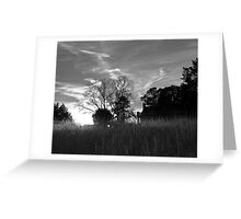 Southern House in the Setting Sun Greeting Card