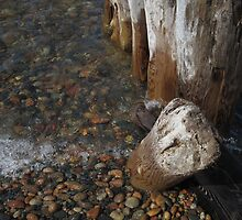 Whitefish Point by marybedy
