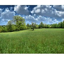 Appalachian Green Photographic Print