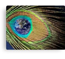 Earth Feather Canvas Print