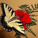 Butterfly Rose by Rick  Friedle