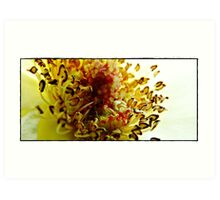 Guts Of A Flower Art Print