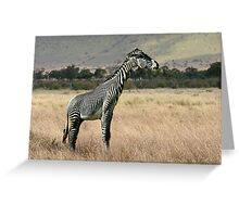 Zebraffe Greeting Card