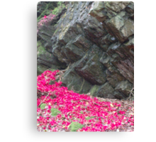 Portmeirion Rock Face Canvas Print