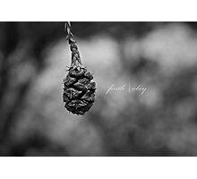 faith | obey Photographic Print
