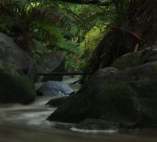 Olivers Creek by Dave Callaway