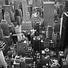 New York City View by simtmb