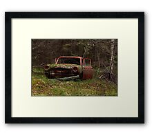 Hide and Seek III Framed Print