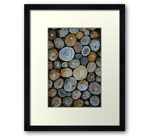 Having a shell of a time Framed Print