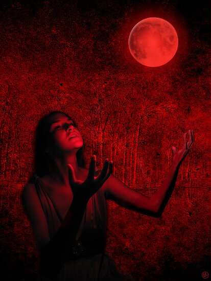 Blood Moon by Linda Lees