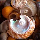 Tide Treasure by John Dewar