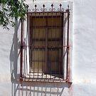 Window at San Xavier del Bac 2 by nealbarnett
