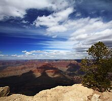 Grand Canyon Beauty by ChePhotography